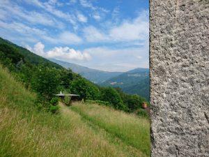 Scenic Trail K113 2019