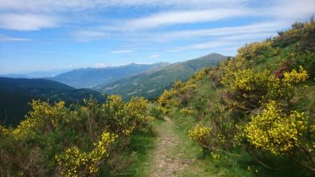 Scenic Trail 2017