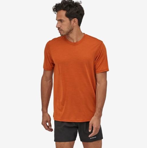 cPatagonia Capilene Cool Merino Shirt Motiv